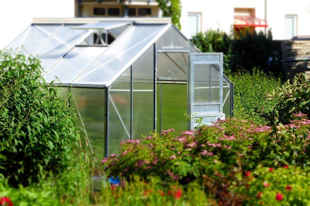 Kweken In Een Kas Tuinideeen Glastuinbouw Zelfgemaakte Kas