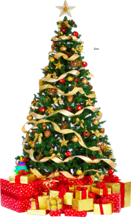 Download Xmas Tree Png 3 Hq Lar Clipart Png Photo Png Free Png Images Christmas Tree With Presents Christmas Tree Clipart Christmas Tree Store
