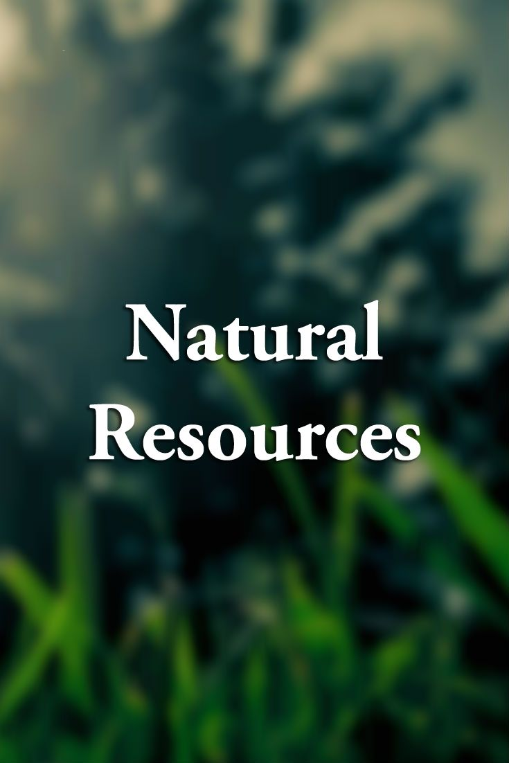 The Department of Natural Resources leads Maryland in