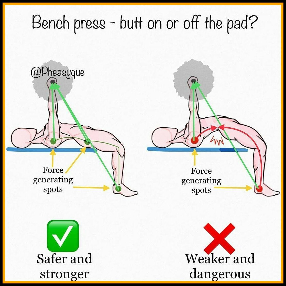 56 Reference Of Bench Press Proper Form Reddit In 2020 Bench Press Chest Workouts Gym Workout Tips