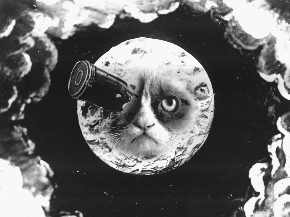 Grumpy Cat - A Trip to the Moon by Martin S.