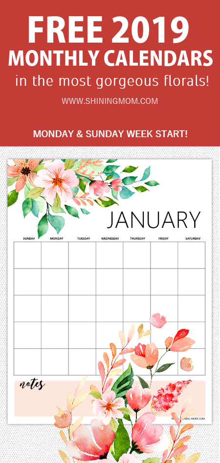 FREE Printable 2020 Monthly Calendar and Planner in