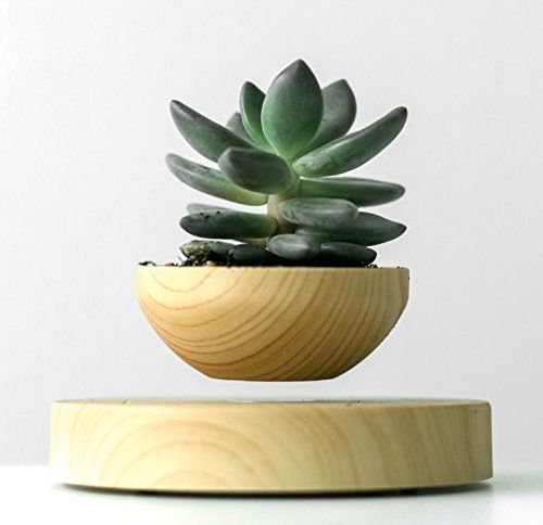 Petra levitating plant pot w included artificial plant for Levitating plant