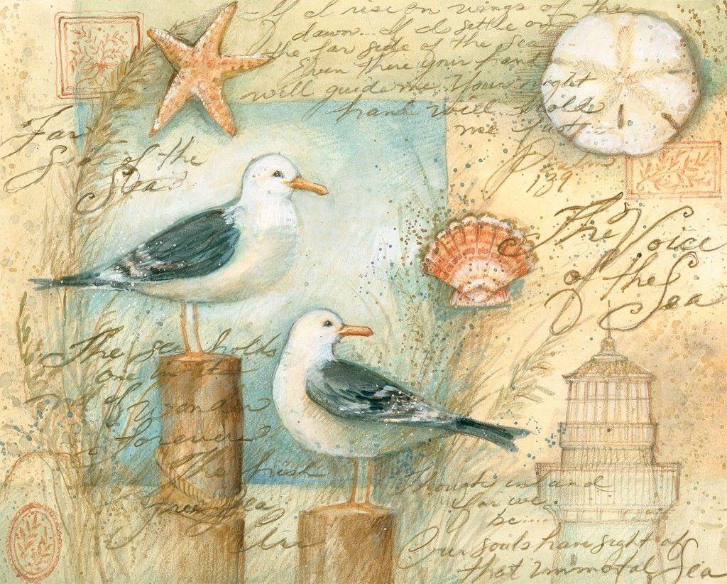 Seagulls And Shells