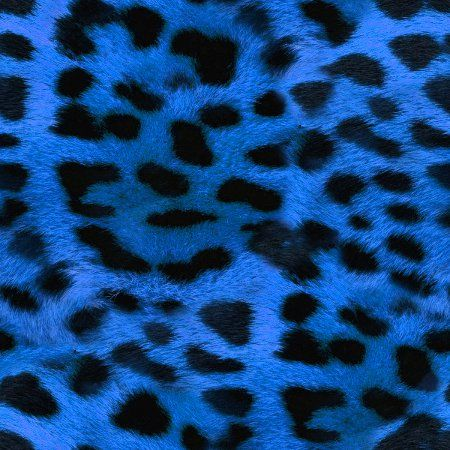 Perrywinkle Background Patterns And Images Animal Print Wallpaper Animal Print Background Leopard Print Background Blue wallpaper cheetah print