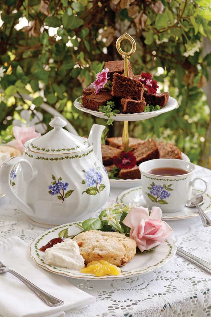 Jaynes Cozy Corner Afternoon Tea Tea Party Garden Tea