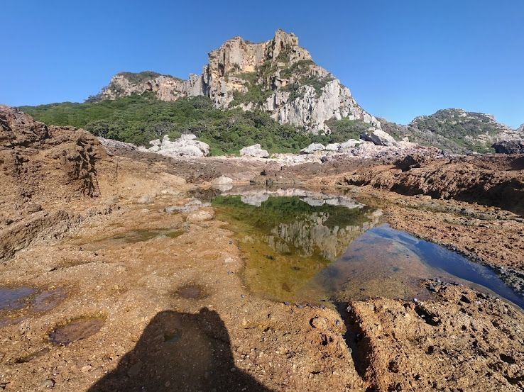 Rock Pools at The Poor Knights