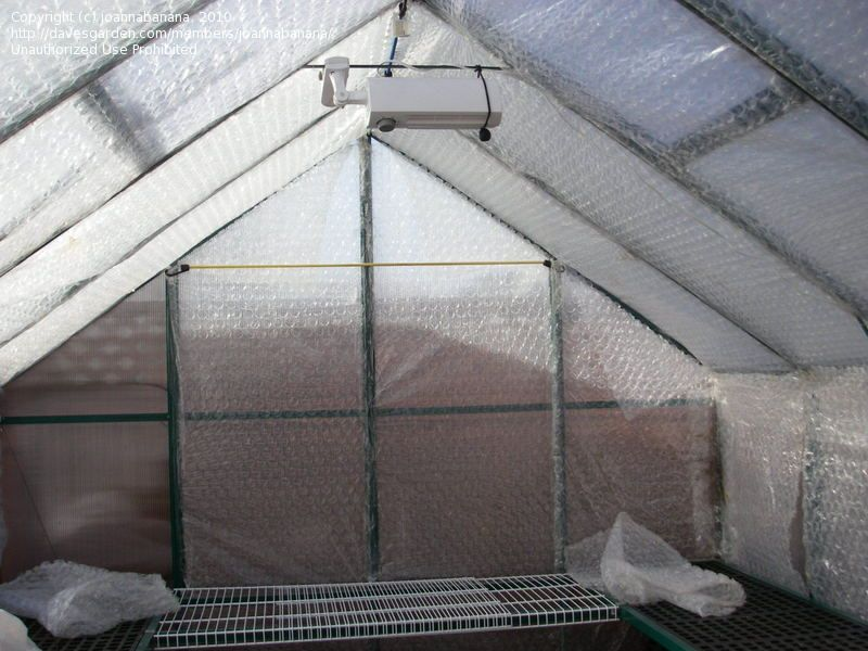 Greenhouse Insulation Picture Bubble Wrap The Greenhouse For