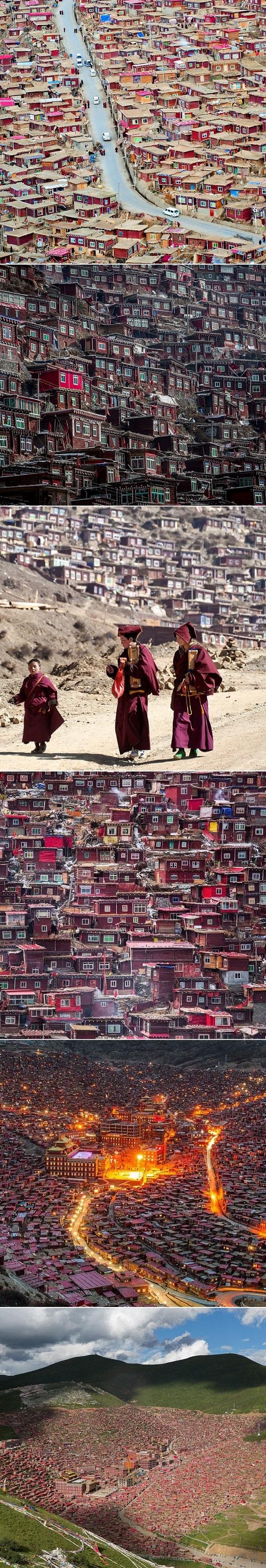 Travel Lust: Buddhist Academy in China
