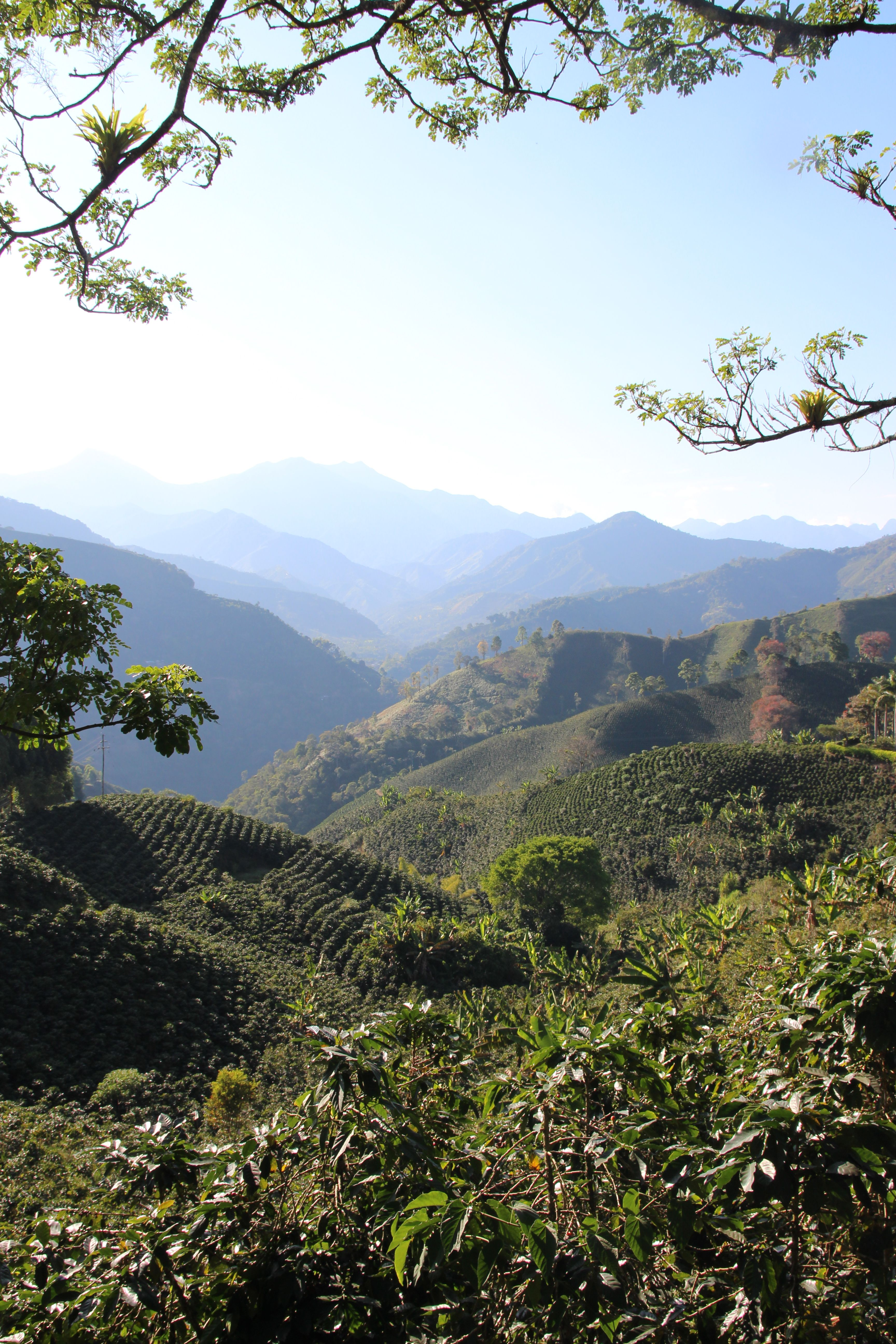 Jardin Antioquia Colombia The Southwest Of Antioquia Is One Of