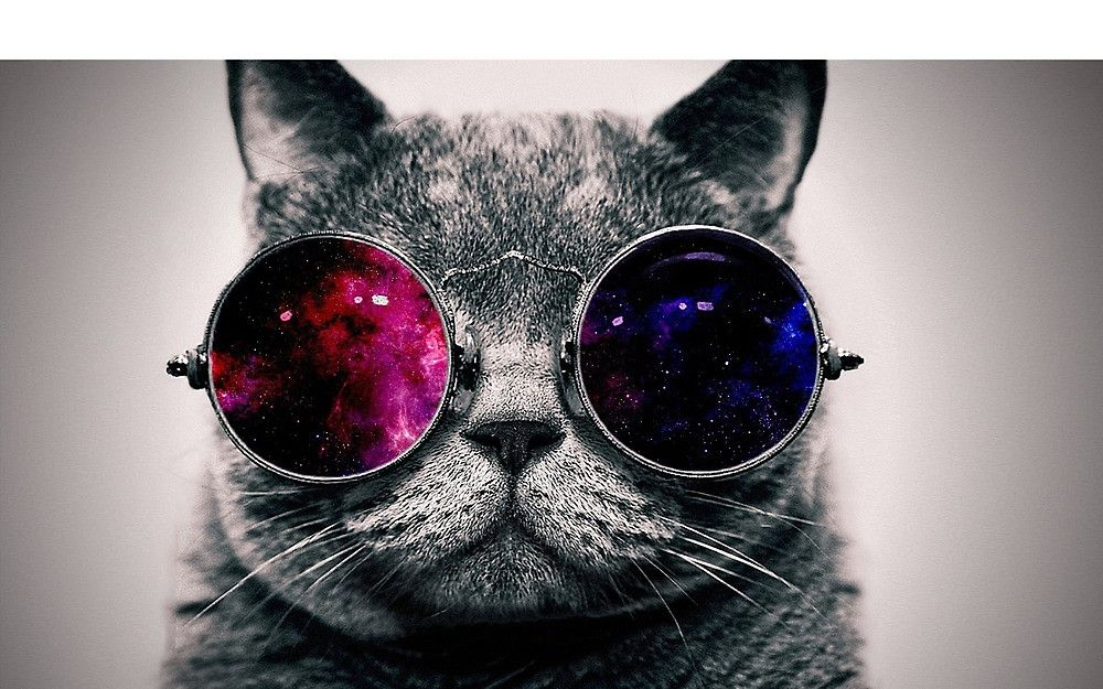 Cosmic Glasses 2