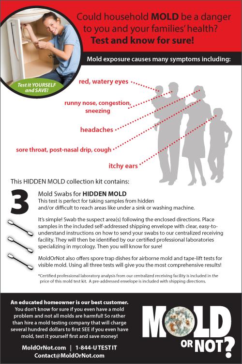 Diy Home Test For Mold Contamination