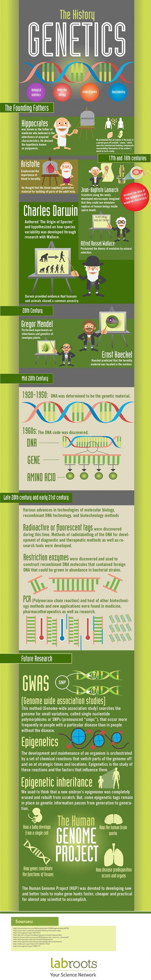 ☤ MD ☞☆☆☆ The History of Genetics Infographic.