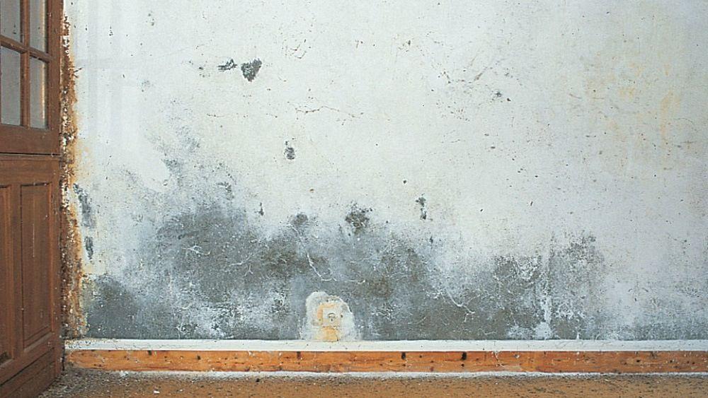 7 Astuces De Grand Mere Pour Enlever La Moisissure Dans La Salle De Bain Avec Images Enlever Les Moisissures Moisissure Astuce De Grand Mere