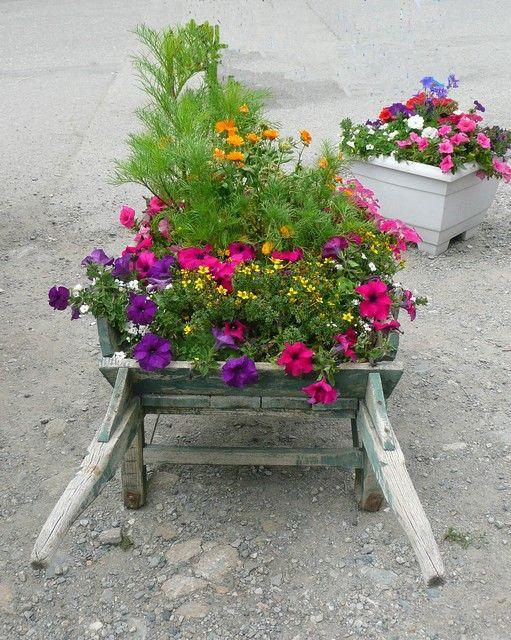 La brouette fleurie brouettes fleuries brouette fleurs et decoration jardin - Brouette de jardin en bois ...