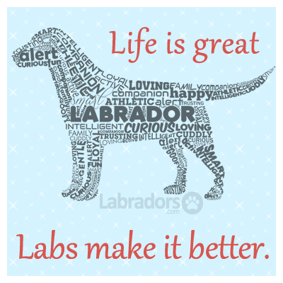 So true! Life is great... Labs make it better! #labradors www.labradors.com