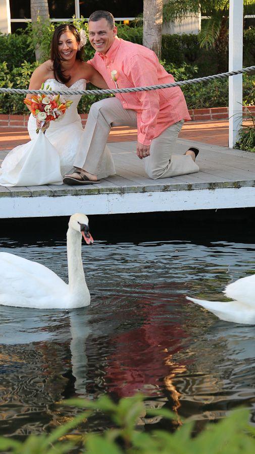 Photographers St Pete Beach Weddings Grand Plaza Don Cesar Sirata St Pete Beach Florida Beach Wedding Wedding Photography Gallery