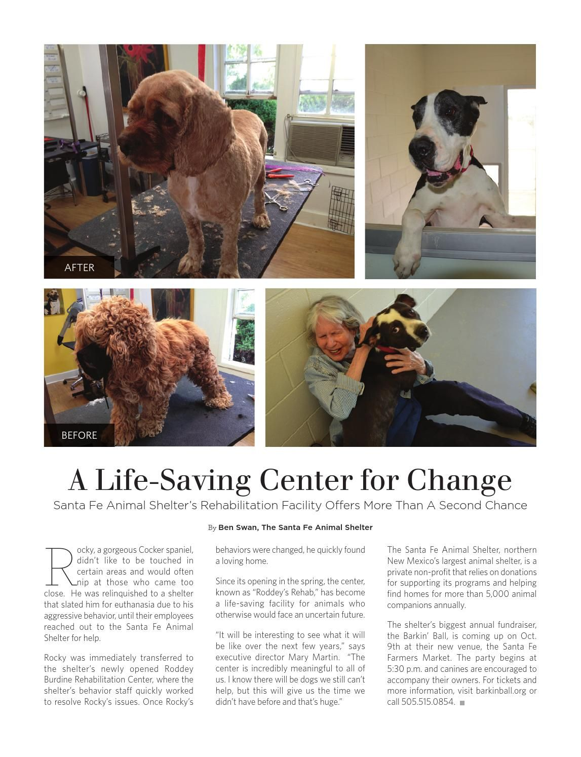 A LifeSaving Center for Change Animal shelter, Humane