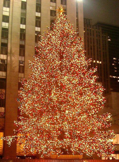 Christmas Lights Ideas I Love Christmas!! Pinterest Blog