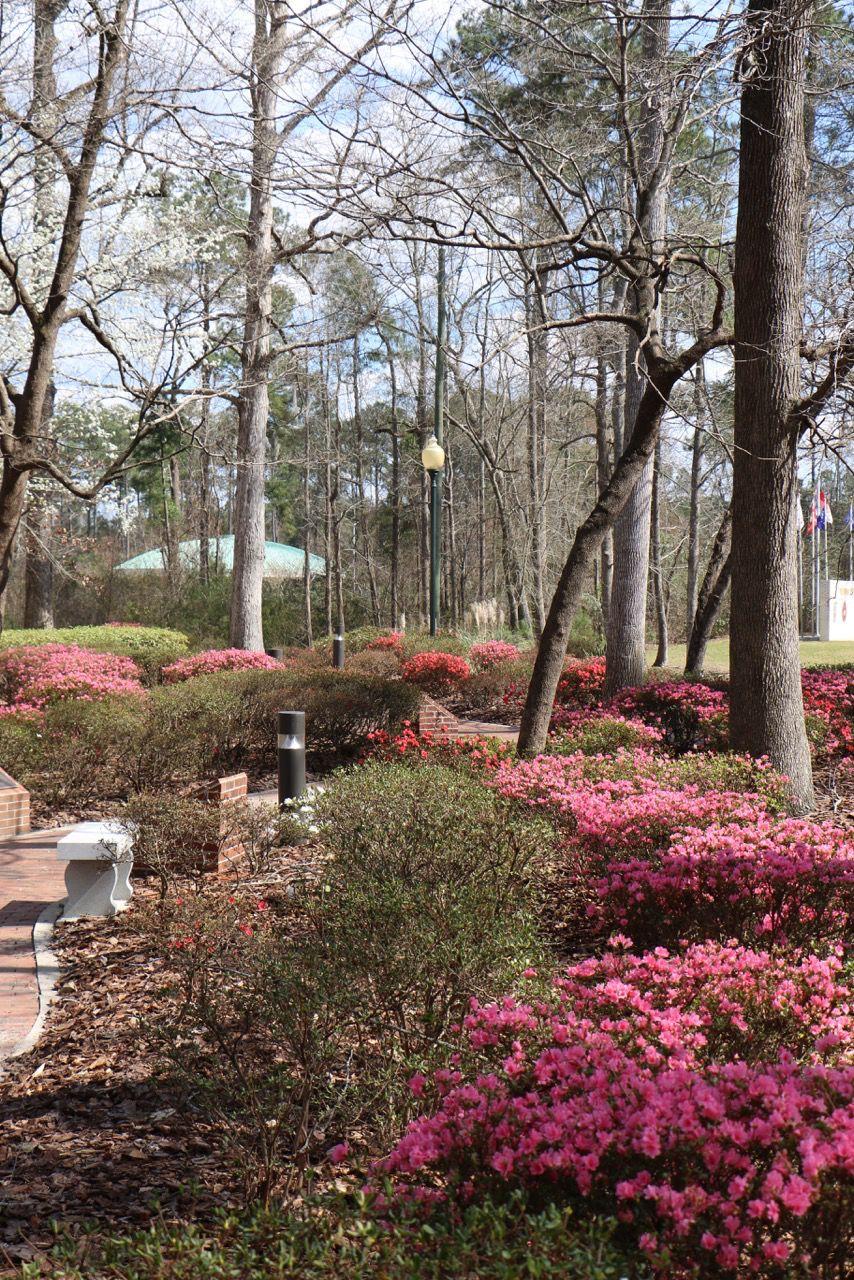Jacksonville NorthCarolina (cojfacebook) on Pinterest