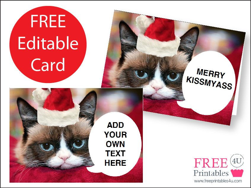 Free grumpy cat printable christmas card christmas pinterest free grumpy cat printable christmas card m4hsunfo