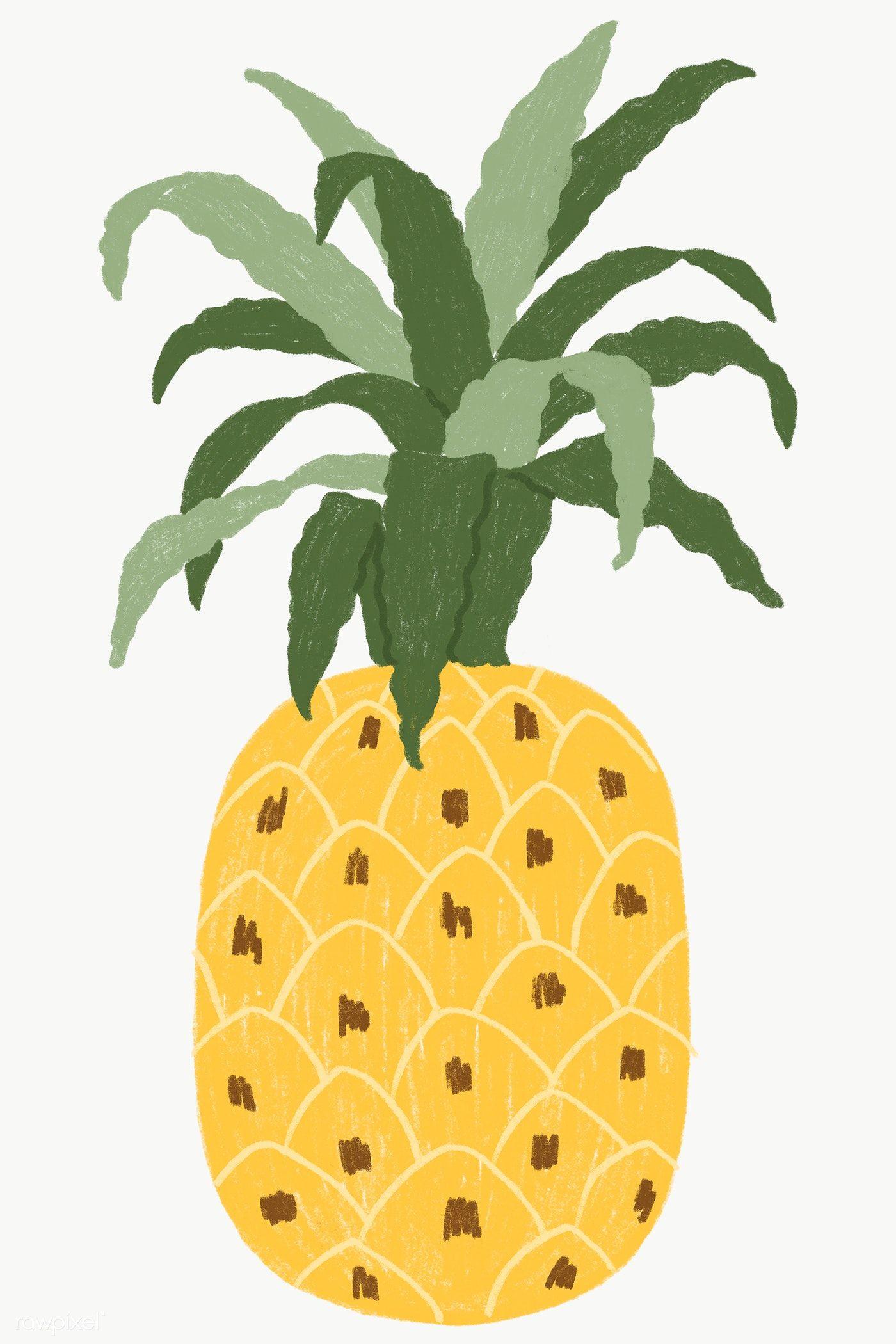 Download Premium Png Of Hand Drawn Pineapple Design Resource Transparent ในป 2020
