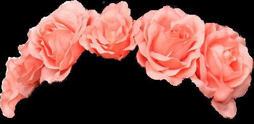 Flower Crown Overlay Flower crown, Flower images, Overlays