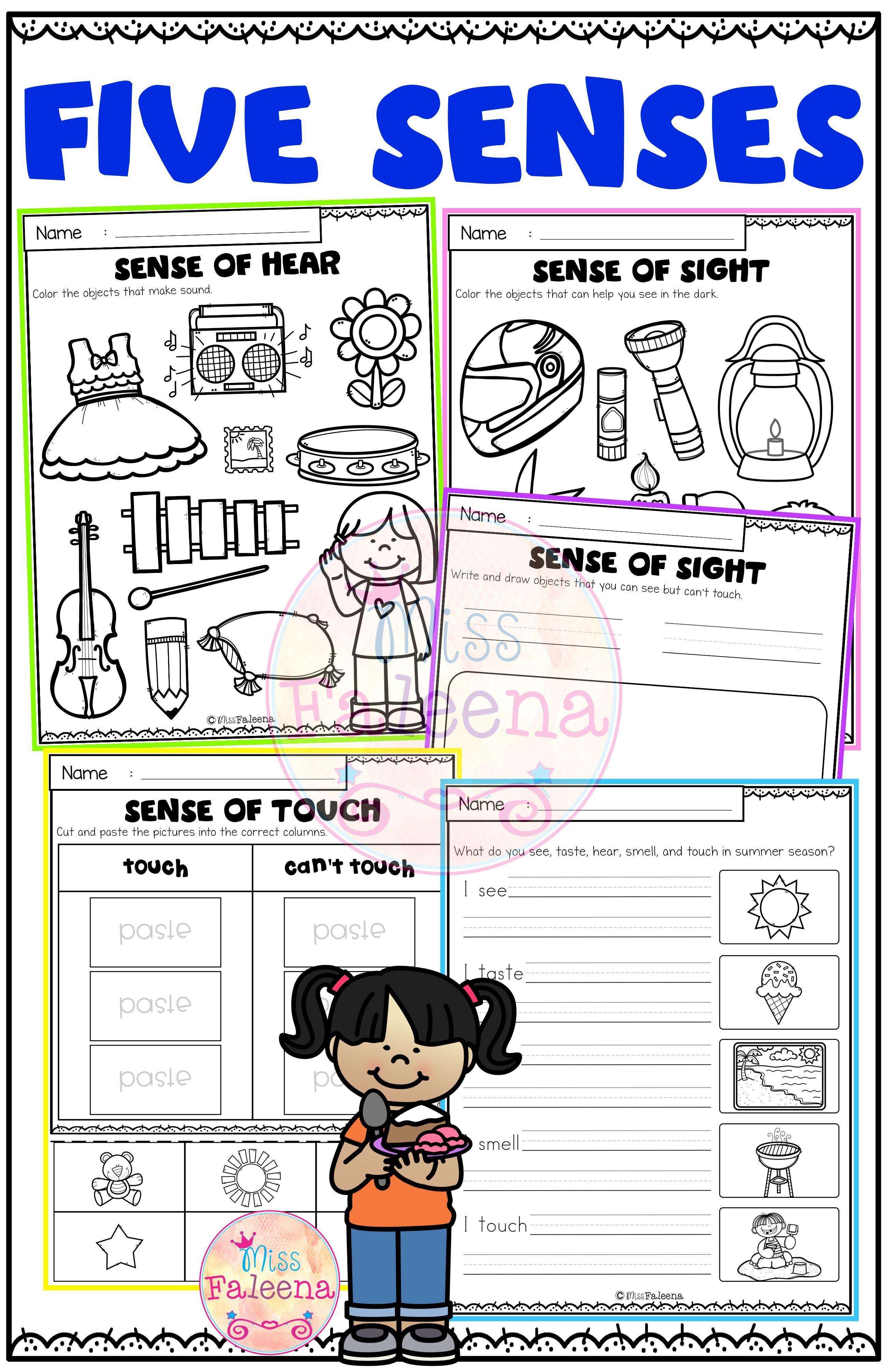 Five Senses Activities In