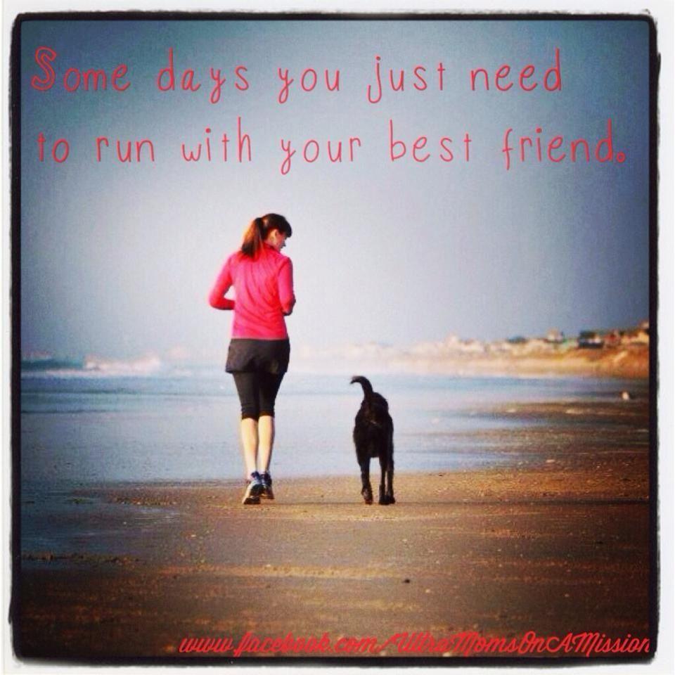 Run With Your Dog Running Buddies Running Running Quotes
