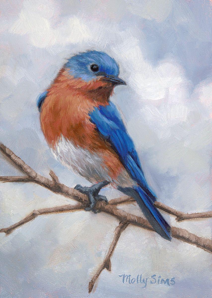 Bluebird 5X5 inch original oil painting of a Bluebird  |Bird Painting Acrylic