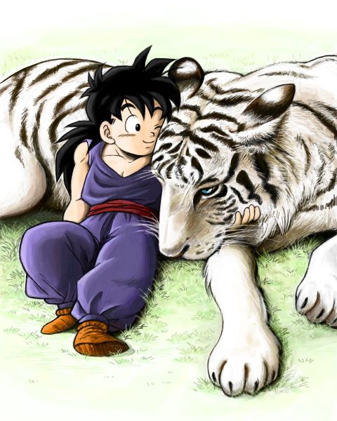 Who! Really cool drawing of kid Gohan with a white tiger!