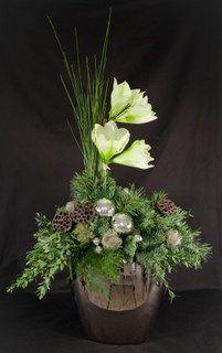 Bildergebnis für bloemschikken kerst amaryllis #amaryllisdeko Bildergebnis für bloemschikken kerst amaryllis #amaryllisdeko