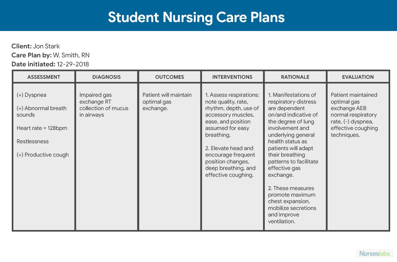 Nursing Care Plan (Ncp) Ultimate Guide And Database