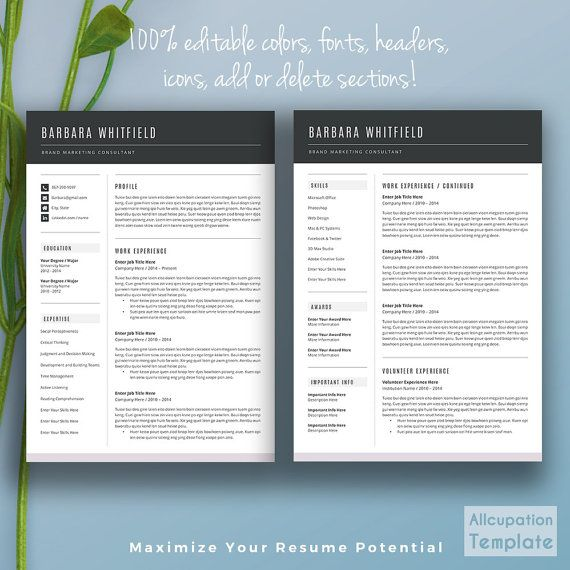 Professional Resume Template Cv Template Cover By Allcupation