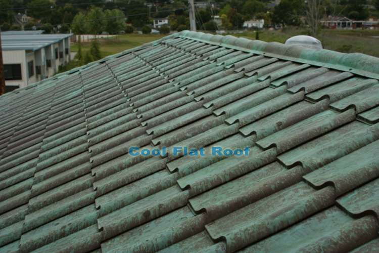 roof descriptions