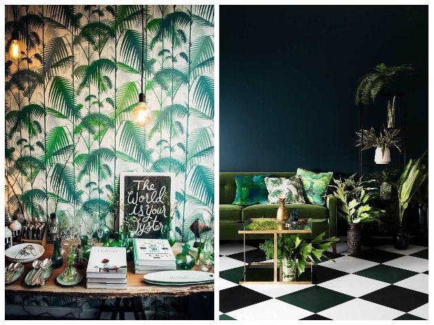 Tendance jungle : Nature luxuriante et camaïeu de verts dans la déco