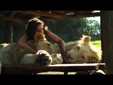 Animal Odd Couples S01E02