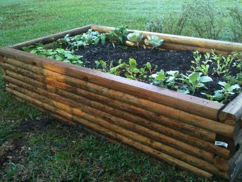 How to build a raised bed garden Gardening Pinterest Gardens