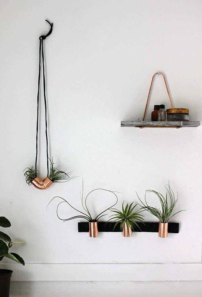 Industrial Style Copper Airplant Diy Plus Other Ideas For Hanging Plants On Walls Diy Decor Copper Diy Modern Decor Diy