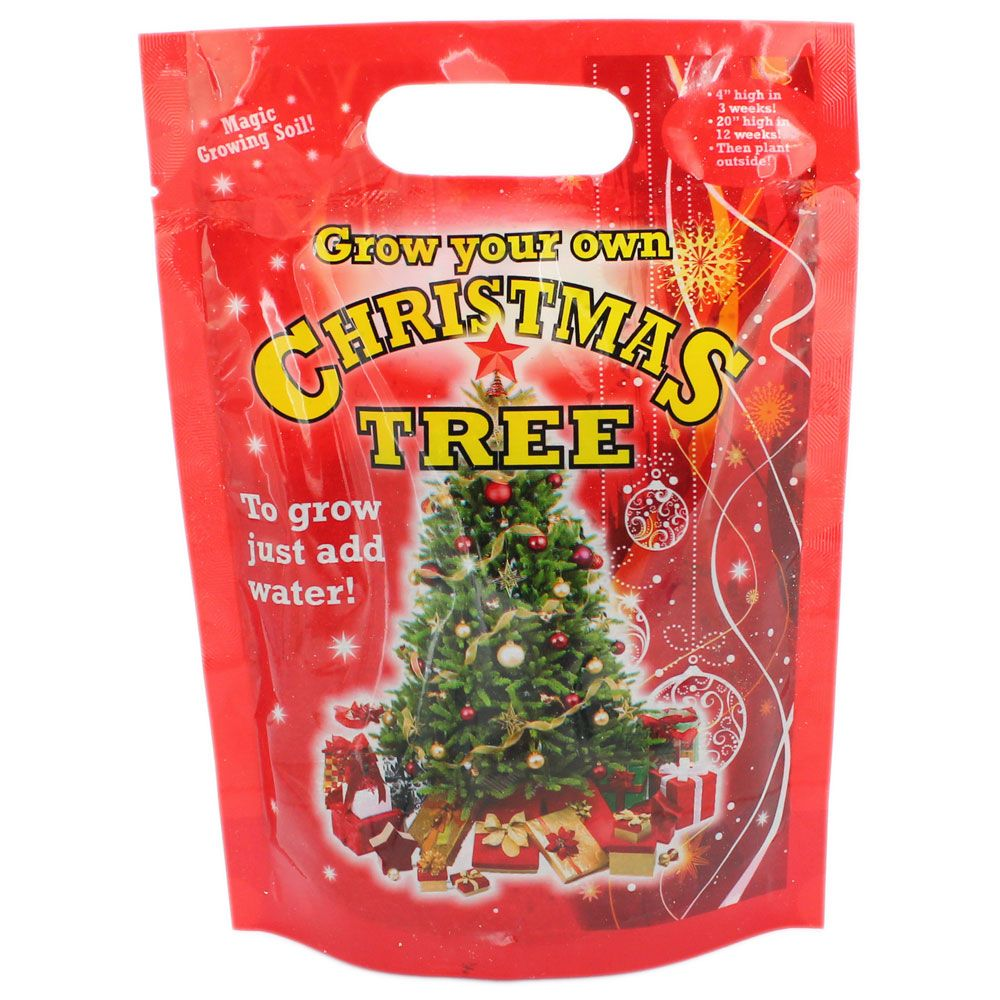 Grow Your Own Christmas Tree | Christmas Decorations at The Works