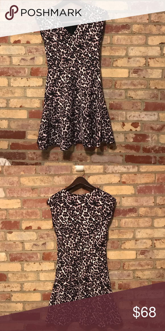 Rebecca Taylor Leopard Animal Print Dress 0 XS A-Line Silhouette Knee  Length V-Neckline Animal Leopard Print Missing Fabric Tag Perfect Condition  Rebecca ... 6c7351d33