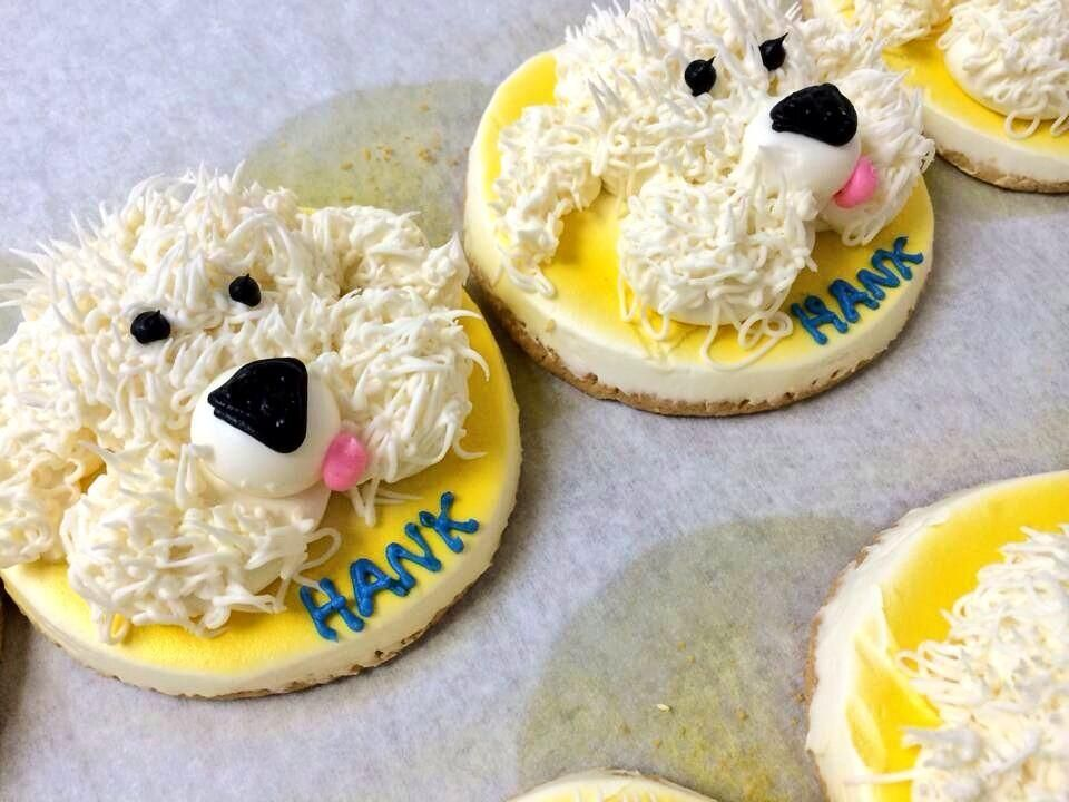 These Awesome Hank The Dog Cookies Will Be Sold At Grebes Bakery 3 26 31 With 20 Of Sales Going To Wisconsin Humane Society Pictwitter Oi1utGnJeT