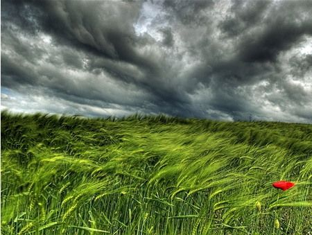 35 Fantastic Hdr Images Hdr Pictures Hdr Photography Nature Photography