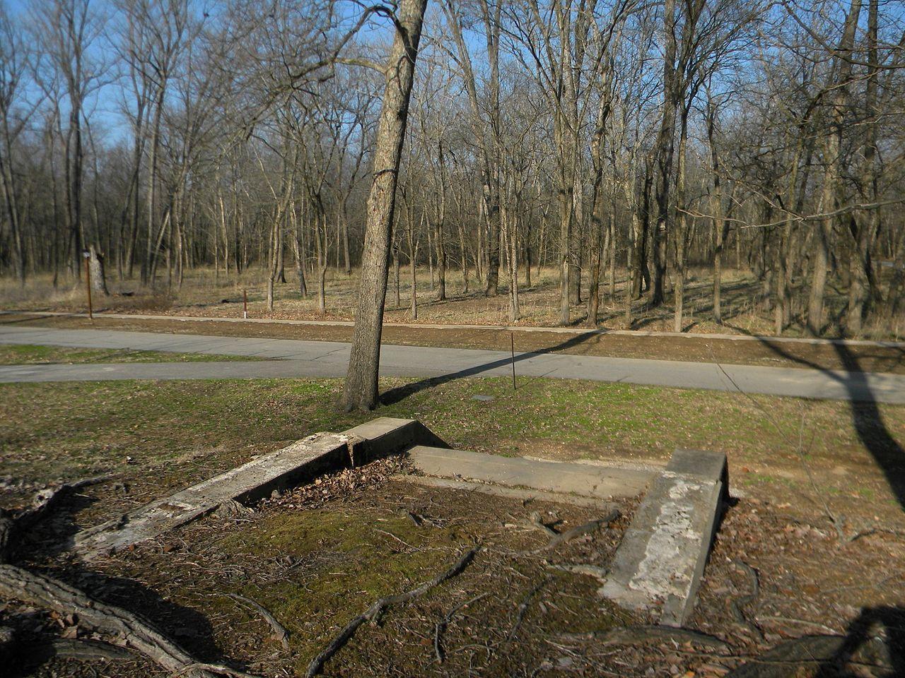 Old Greenville (23WE637) in Wayne County, Missouri.