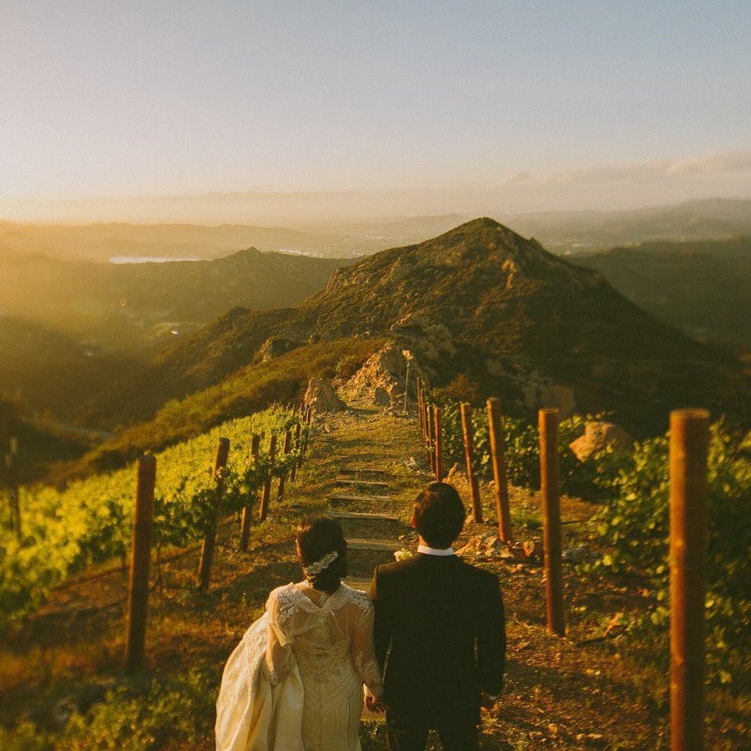 Malibu Destination Wedding vineyard wedding bride & groom