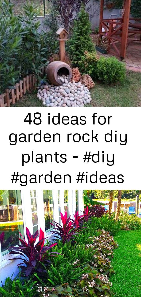 48 ideas for garden rock diy plants  2 48 Ideas For Garden Rock Diy Plants  Tropical Garden Landscapes Design Stylish 47 Fantastic Florida Landscaping Ideas You Need To K...