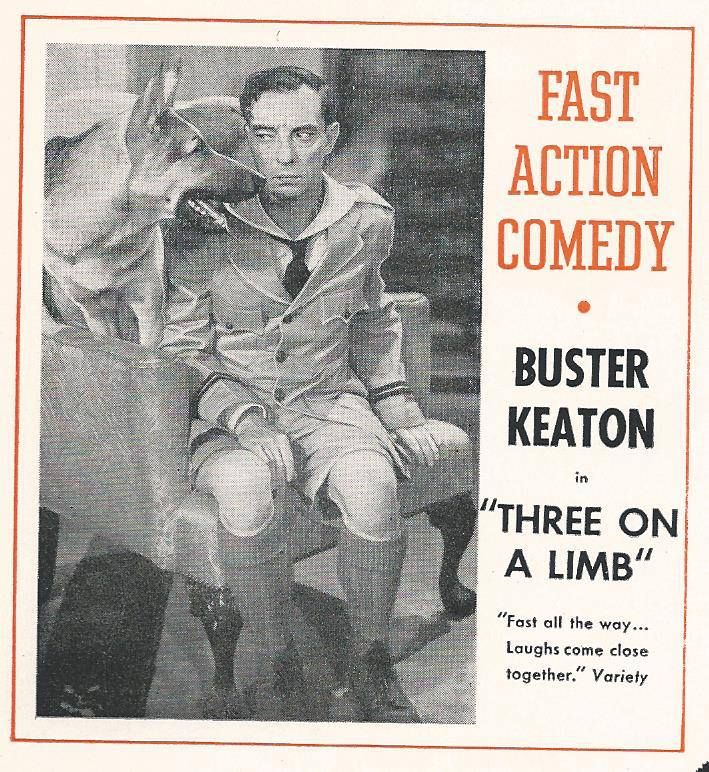 Image result for buster three on a limb