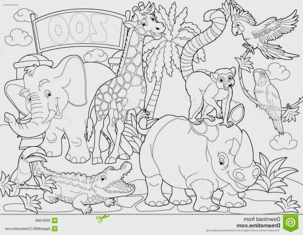 Zoo coloring pages and activities