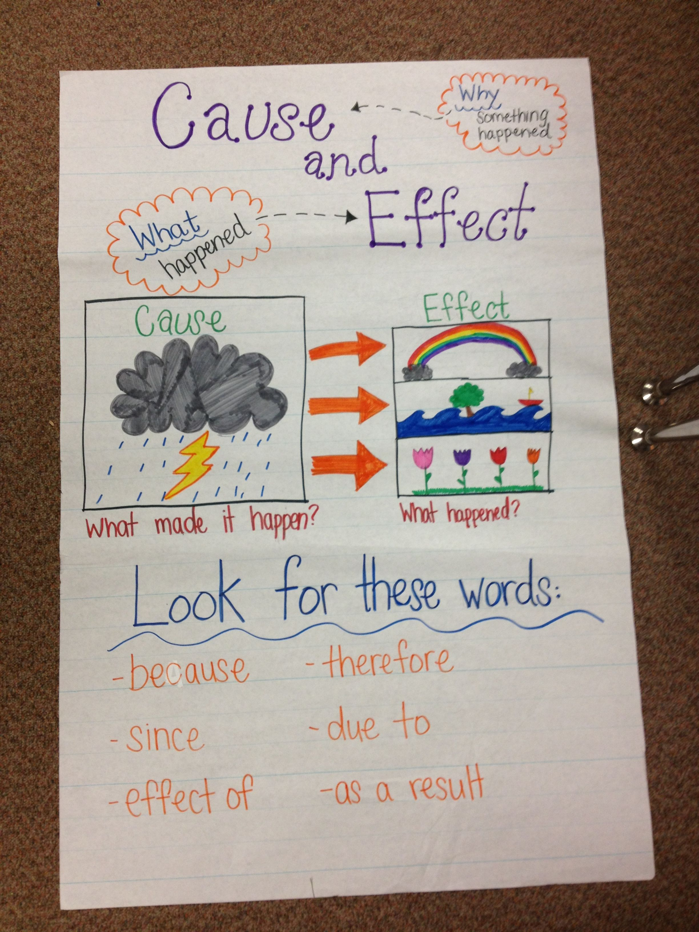 Cause And Effect Anchor Chart 2nd Grade