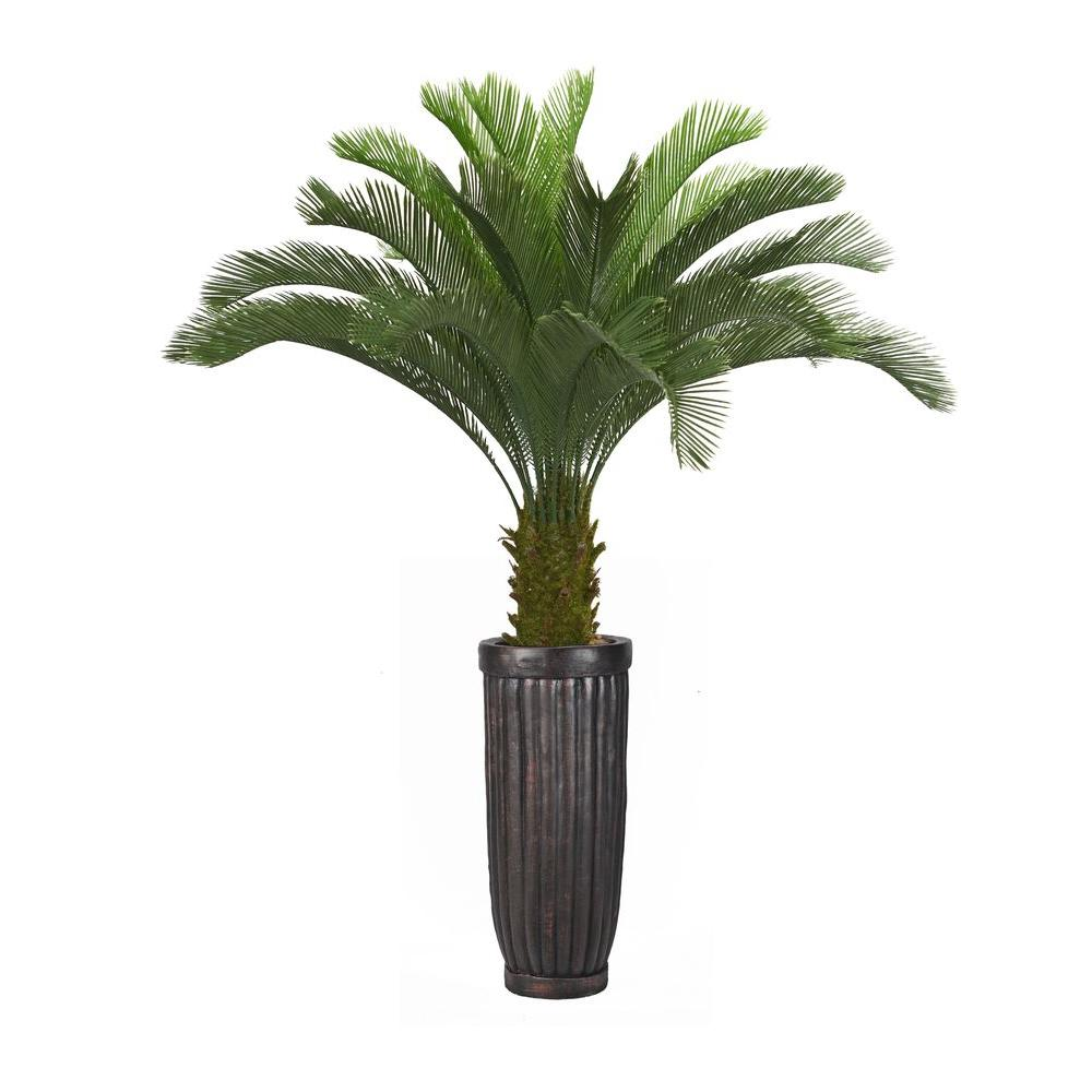 Home Depot Palm Trees Laura Ashley 69 In Tall Cycas Palm Tree In Planter Products